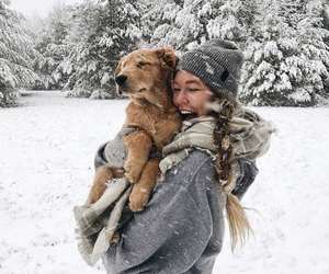 winter, dog, and snow image
