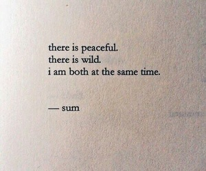 quotes, wild, and book image