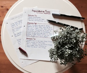 books, inspo, and plant image