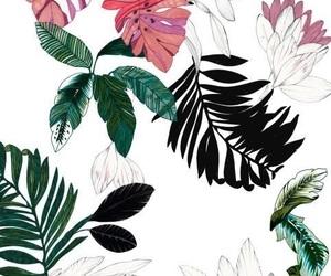 wallpaper, plants, and art image