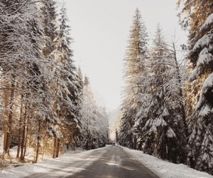 winter, december, and snow image