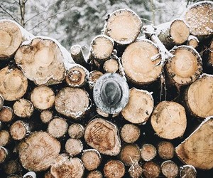 snow, wood, and cold image
