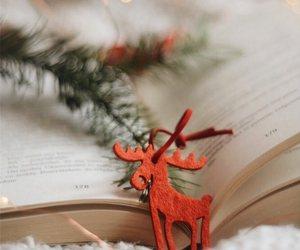 book, christmas, and photography image