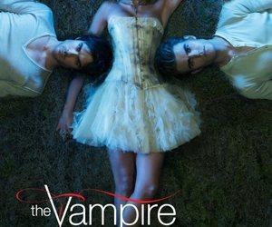 the vampire diaries, stefan salvatore, and damon salvatore image