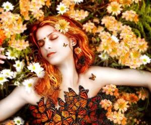 daisies, redhead butterflies, and tiffanys realm art image