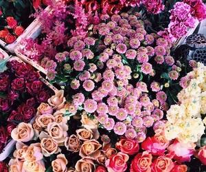 beautiful, fashion, and flower image