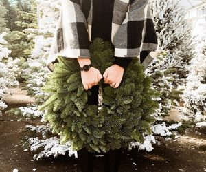 accessories, christmas, and decor image