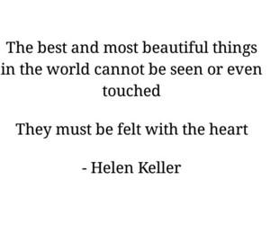 beautiful, heart, and life image