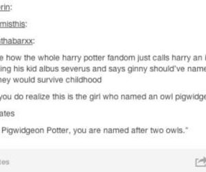 harry potter, funny, and humor image