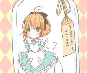 sakura image