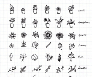 plants, doodle, and drawing image