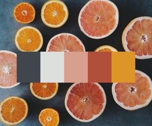 aesthetics, art, and grapefruit image