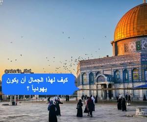 فلسطين, مبعثرات, and مٌنَوَْعاتْ image