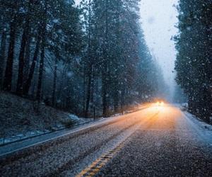 magical, nature, and snowfall image