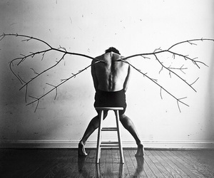 black and white, angel, and wings image