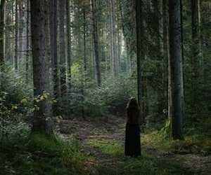 fantasy, forest, and alone image