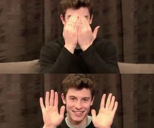 perfection, shawn mendes, and cute image