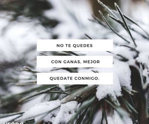love, frases, and winter image