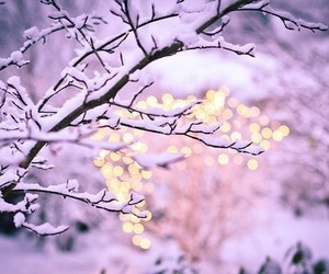snow, winter, and light image