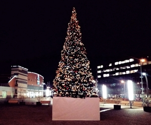 christmas, christmas tree, and city image