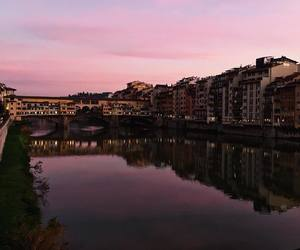 florence, pink, and photography image