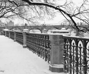 bridge, city, and prague image