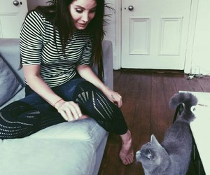 lana del rey, cat, and indie image