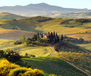 nature, italy, and Tuscany image