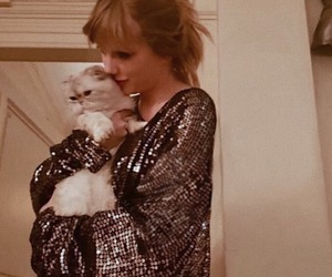 cat and Taylor Swift image