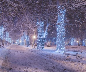 advent, christmas, and cold image