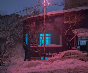blue light, pink light, and winter image