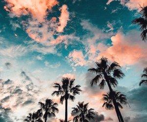 adventure, paradise, and beach image