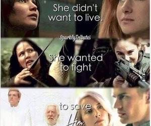 divergent, the hunger games, and books image