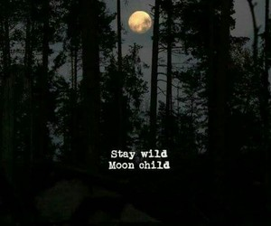moon, dark, and forest image