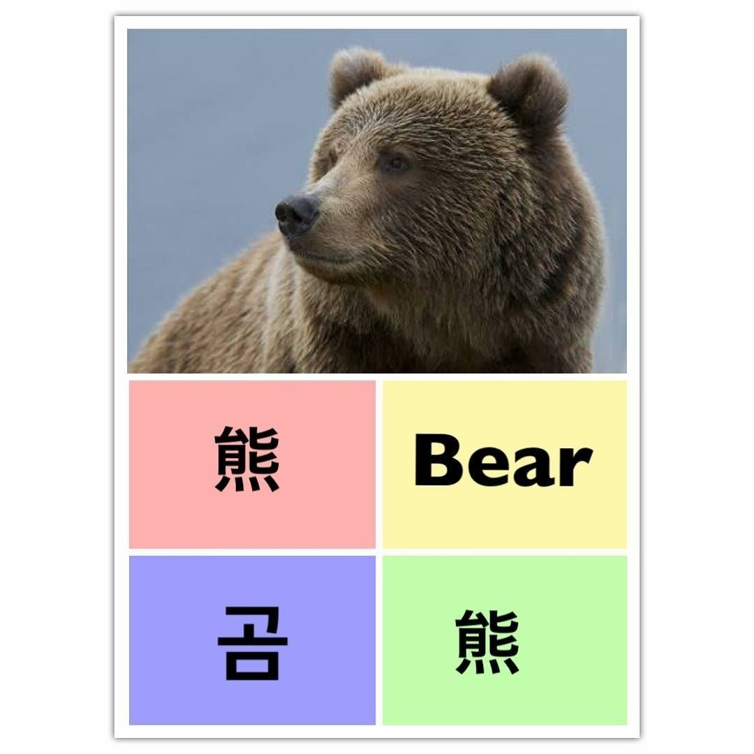 learn chinese, learn english, and 곰 image