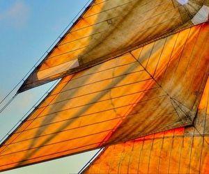 blue, orange, and sail image