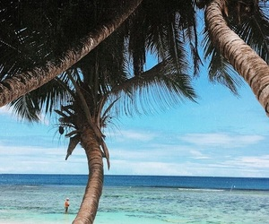 palm trees, tropical, and seychelles image
