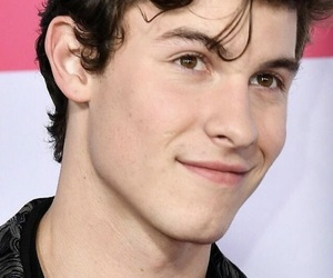 mendes, red carpet, and shawn image