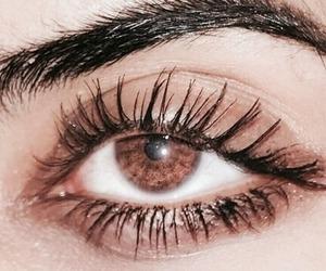 brown eyes and eyes image