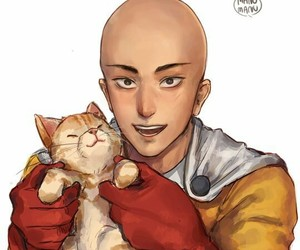 cat, hero, and saitama image