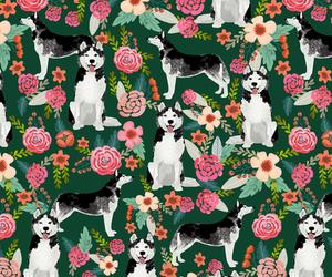 animal, background, and dog image