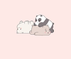 wallpaper, panda, and bear image