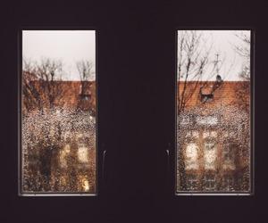 rain, window, and winter image