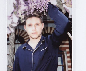 niall horan, one direction, and beautiful image