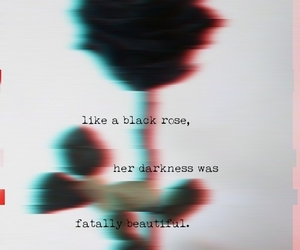 aesthetic, black, and black rose image
