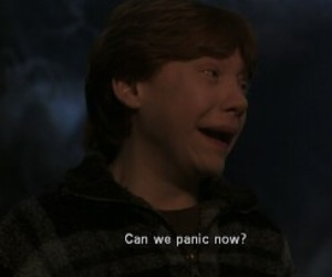 harry potter, ron, and panic image