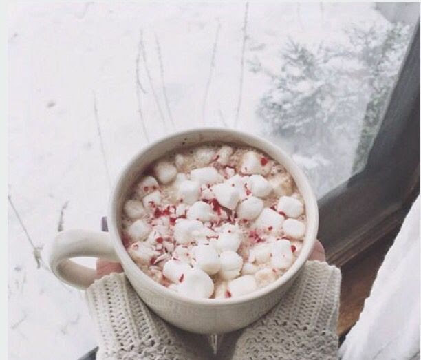 Image result for hot cocoa in snow