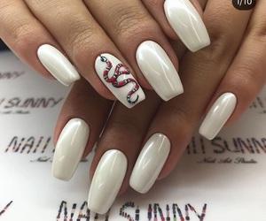 gucci, nails, and snake image