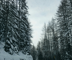 christmas, roadtrip, and snow image