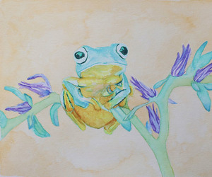 frogs, watercolors, and nature image